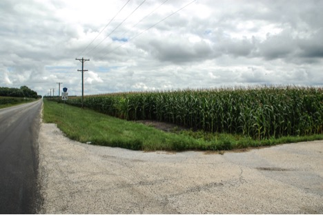 Cornstalks skew the street view of the proposed lot for the private immigrant detention facility. (Alexa Mencia/MEDILL)